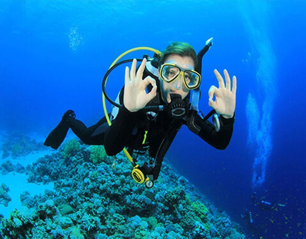 Scuba Diving Explore the Adriatic