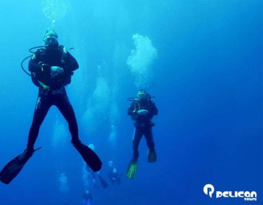 Scuba Diving Split